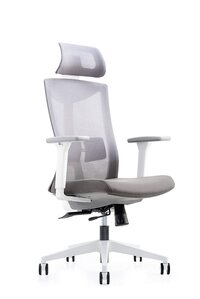 best chair for back pain India